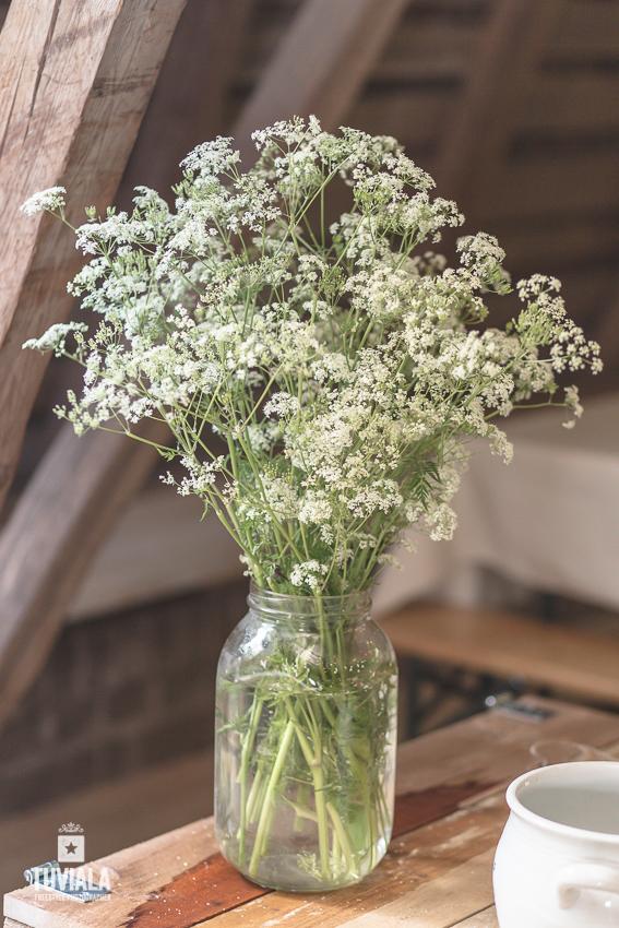 Kukkia maljakossa